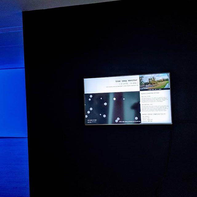 Tree Sway Monitor, Aldrich Museum